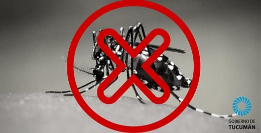 Enfermedades infecciosas: Dengue y Chikungunya